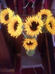 HarvestSunflower