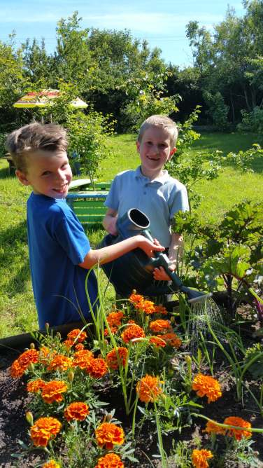 Caring for our garden
